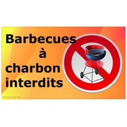 Barbecues Charbon Interdits